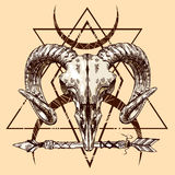 Illustration animal skull Royalty Free Stock Images