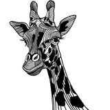 Illustration animale de vecteur principal de girafe pour le T-shirt. Photo libre de droits