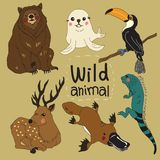 The wild animals set of cartoon design vector illustration