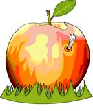 Illustration Apple falled in to the grass has a worm visitor Royalty Free Stock Photography