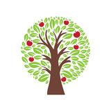 Illustration of apple tree. Vector Royalty Free Stock Photography