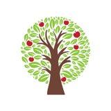 Illustration of apple tree. Royalty Free Stock Photography