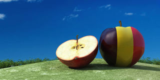 illustration of apples in the field Royalty Free Stock Photos