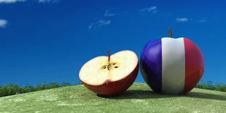 Illustration of apples in the field Royalty Free Stock Photo