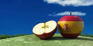 illustration of apples in the field Stock Photography