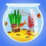 Illustration of Aquarium with fishes, algae and decorations. Illustration of circle aquarium with fishes, algae, decorations and sand Royalty Free Stock Images