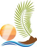 Leaves of palm tree logo Royalty Free Stock Photos