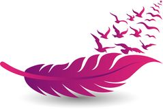 Pink feather and birds fly logo Royalty Free Stock Photos