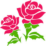 Two rose Royalty Free Stock Image