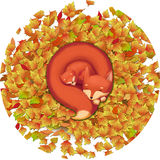 Illustration: Artwork: The Sleeping Fox Mother and Child in the Falling Leaves. Realistic Fantastic Cartoon Style Scene / Wallpaper / Background / Character Stock Photo