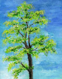 Illustration of an Ash Tree in Summer Stock Image