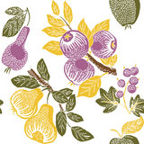 Illustration of assorted fruits Royalty Free Stock Photo