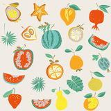 Illustration of assorted fruits Royalty Free Stock Image