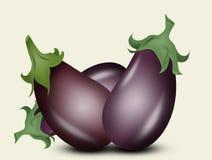 Illustration of aubergine. Vegetables eggplants stock illustration