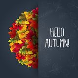 Autumn background with maple leaves. Illustration of Autumn background with maple leaves Stock Photography
