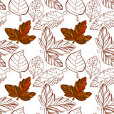 Illustration of Autumn graphic with color stylize seamless pattern. Doodle design for backdrop. Drawing leaves, foliage. Vector illustration of Autumn graphic Stock Photos