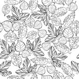Illustration of Autumn graphic stylize seamless pattern. Doodle design for backdrop. Drawing leaves of maple nature. Vector illustration of Autumn graphic Royalty Free Stock Photo