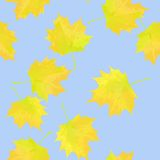 Illustration of autumn leaves against the sky Stock Photos
