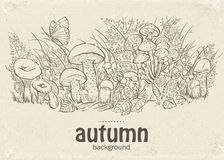 Illustration of autumn mushrooms, grass and butterflies in the loop Stock Image