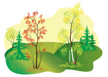 Illustration of autumn nature - vector Stock Image