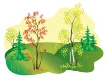 Illustration of autumn nature - vector. Vector illustration of autumn nature Stock Image