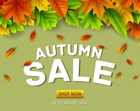 Autumn sale background with falling leaves. Illustration of Autumn sale background with falling leaves Royalty Free Stock Photo