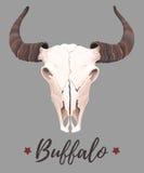 Illustration av buffelskallen vektor illustrationer
