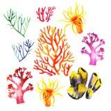 Illustration av de färgrika korallreverna Royaltyfri Bild