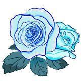 Illustration av den blåa rosen Royaltyfri Foto