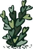 Illustration av den enkla lonenly kaktuns med hjärta formade sidor stock illustrationer