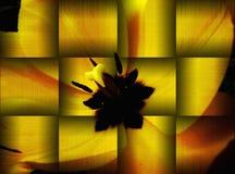 illustration av den gula tulpannärbilden i metallisk guld- och orange royaltyfri illustrationer