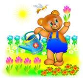 Illustration av den lilla björnen som bevattnar vårblommor Arkivbild