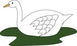 Illustration av den stora vita svanen i den gröna sjön Arkivfoton