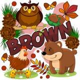 Illustration av en brun färg Royaltyfri Bild