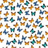 Illustration av en färgrik fjäril Arkivbilder