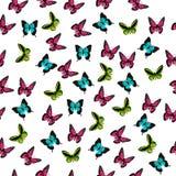 Illustration av en färgrik fjäril Royaltyfri Fotografi