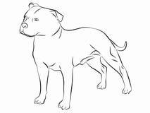 Illustration av en hund, vektorattraktion Fotografering för Bildbyråer