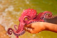 Illustration av en röd bläckfisk på händerna royaltyfri illustrationer