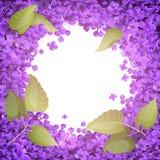 Illustration av en rund ram av blommor och sidor av lilan stock illustrationer