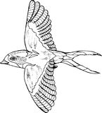 Illustration av en svala i en profil Flyga den kosmiska fågeln vektor illustrationer