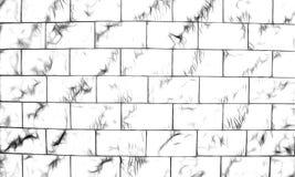 Illustration av en svartvit bakgrund Royaltyfria Bilder