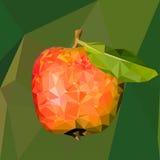 Illustration av ett rött äpple med det gröna bladet i den poly stilen lågt royaltyfri foto
