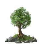 Illustration av ett träd på en ö Arkivfoto