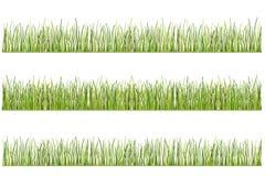 Illustration av gräs, stiliserat gräs, vektor Royaltyfria Foton