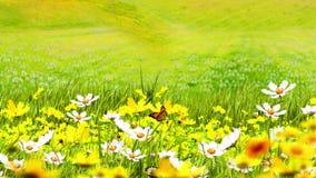 Illustration av gröna ängar och blommor