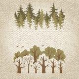 Illustration av grönt barrträds- och lövskogen Royaltyfria Bilder