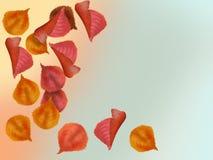 Illustration av härliga färgrika höstsidor som faller från trädet Arkivfoto