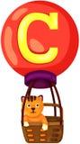 Alfabet C för katt Arkivfoton