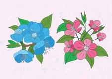 Illustration av körsbärsröda blommor Royaltyfria Bilder