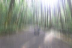 Illustration av naturlig solljusbakgrund Oskarp bild av träd och ljusen i gröna, bruna och vita rörelsefärger arkivbilder